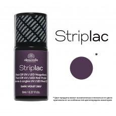 Striplac alessandro  арт 78-601